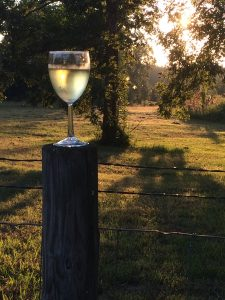 Wine glass on a fence post