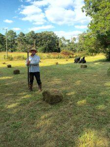 Making hay at Harmony Hall