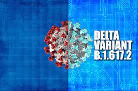 Delta Variant B.1.617.2